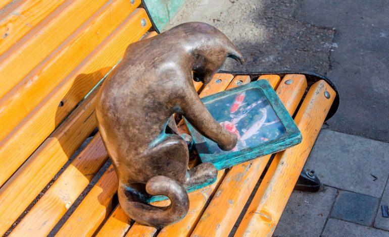 Долгожданное возвращение: кошка-геймер вернулась на свое место в Одессе