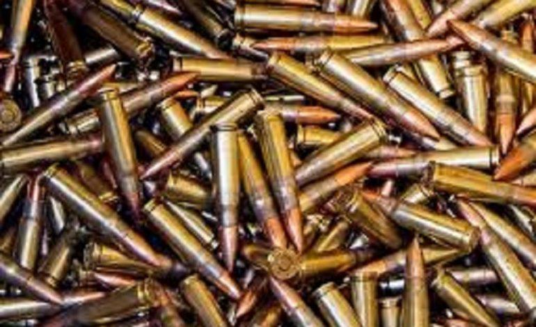 В Ренийском районе в сельском огороде нашли два ящика патронов