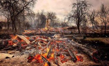В Житомирской области сгорело почти 40 дачных домов