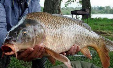 Рыболов-любитель из Белгорода-Днестровского поймал необыкновенную рыбину