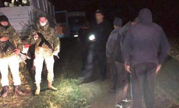 В Тарутинском районе пограничники пресекли незаконную вырубку леса