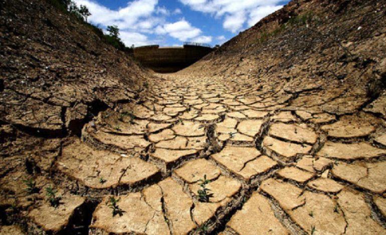 Украина и Молдова возглавили список стран с самым высоким риском засухи