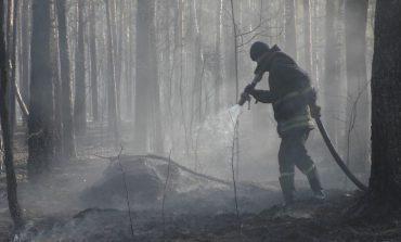 В Житомирской области продолжают тлеть лесная подстилка и древесина, а в Чернобыльской зоне – торфяники