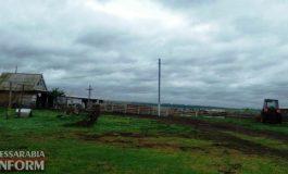 В Татарбунарском районе шакалы нападают на фермы
