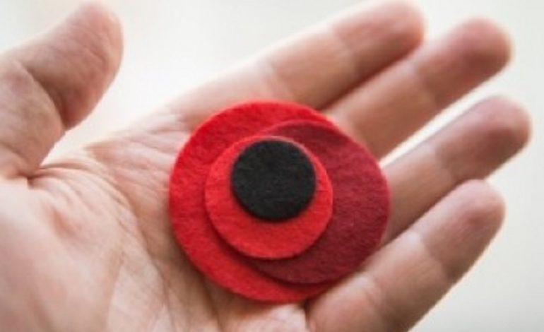 Тарутинский район: концерты ко Дню Победы пройдут онлайн (видео)