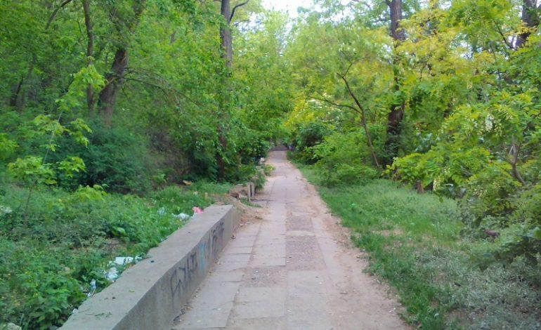 В двух шагах от Гоголя: сквер и лестница в Одессе похожи на свалку (фото)