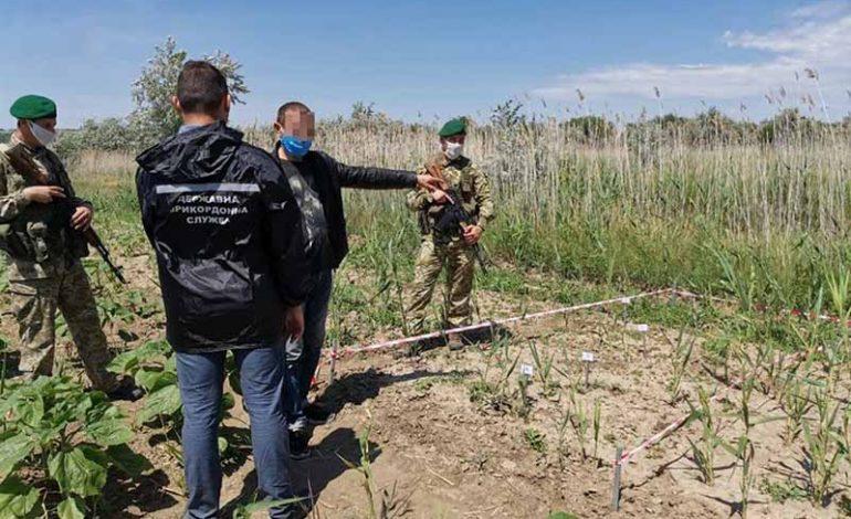 В Болградском районе задержали нарушителей границы, шедших на «смотрины»