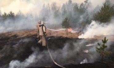 В экосистемах Украины - высокая вероятность пожаров