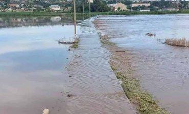 В селе на юге Одесской области наполнилось русло пересохшей реки