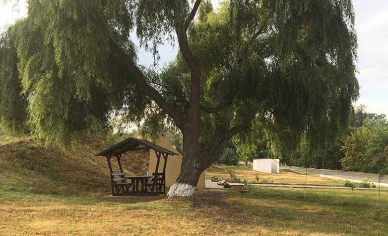 В селе на юге Одесской области занимаются благоустройством