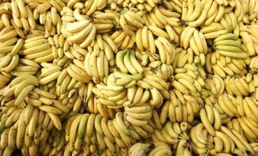 Банан стал самым доступным фруктом в Украине