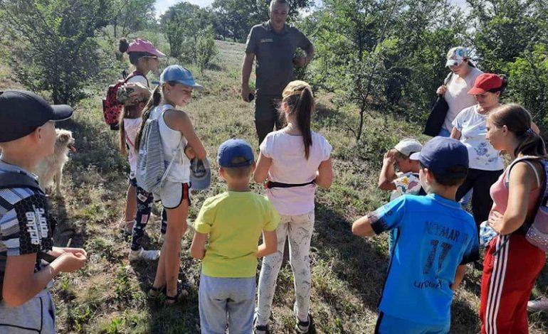 На юге Одесской области дети взялись за спасение муравьев