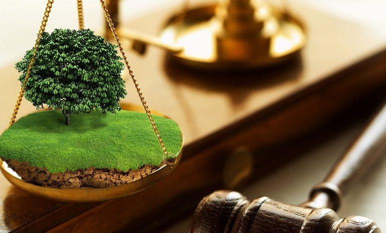 В Арцизском и Саратском районах фермеры незаконно использовали почти 100 га земли