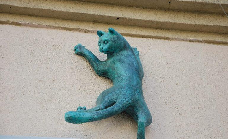 Символы Одессы: где расположены скульптуры одесских котов? (фото)