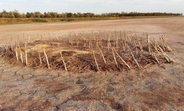 Жуткое зрелище: в Татарбунарском районе на месте лиманов образовалась пустыня