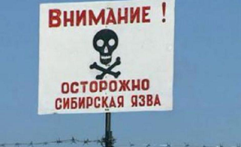 В Саратском районе зафиксировали подозрение на сибирскую язву