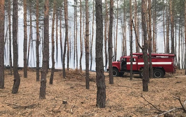Под Днепром произошел лесной пожар