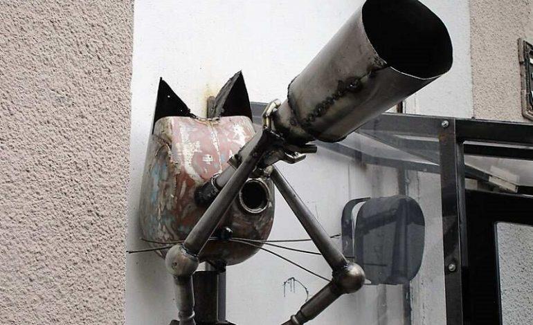 В Одессе появился кот-астроном