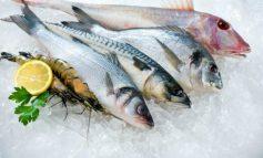 Экспорт рыбы из Украины вырос на 24%