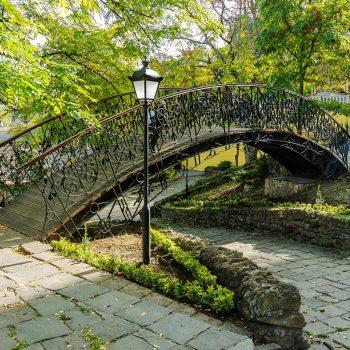 Уголок старой Одессы засадили зелеными насаждениями (ФОТО)