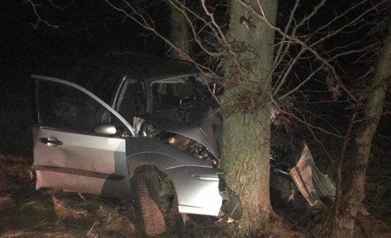 Смертельное ДТП в Саратском районе: один человек погиб, трое — в больнице