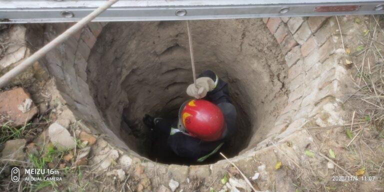 В Измаиле спасали собаку из 10-метрового колодца (ФОТО)