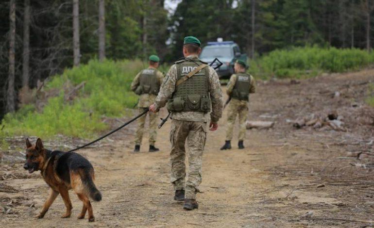 В Одесской области лиса напала на отряд пограничников
