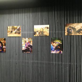 В «Синем Крабе» показали выставку особенных детей с домашними животными (ФОТО)
