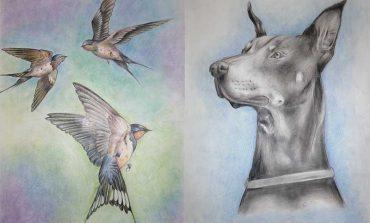 Юные художники Болградского района создали зоологическую галерею