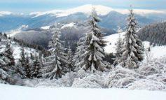 В Карпатах объявили снеголавинную опасность