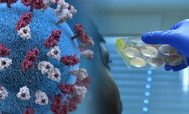 В Одесской области стремительно растет число больных коронавирусом