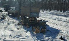 В погранзоне под Белгород-Днестровским сгорела машина черных лесорубов