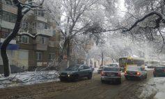 В центре Одессы упавшая ветка заблокировала движение трамваев