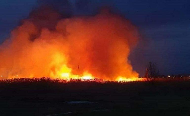 В Измаиле тушили масштабный пожар в экосистеме