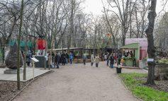 Зеленый театр открыл новый сезон (ФОТО)