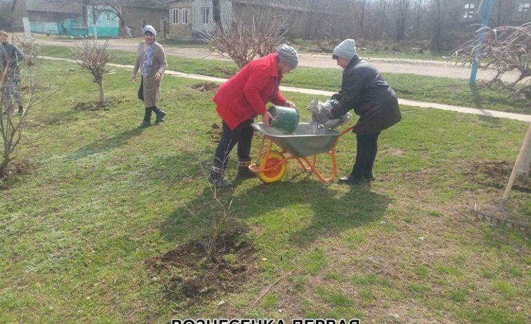 Павловская громада активно убирает ливнёвки, кладбища и стихийные свалки (фото)