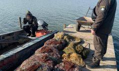 На озере Джаншейское браконьер наловил рыбы на 150 тысяч