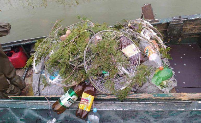 Одесская область: на озере Китай установили нерестовые гнезда для судака