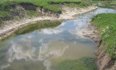 Река Чага в Арцизе превращается в зловонное болото  (ФОТО)