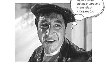 В Ренийской громаде старосту Котловины обвиняют в «узурпации» пастбища