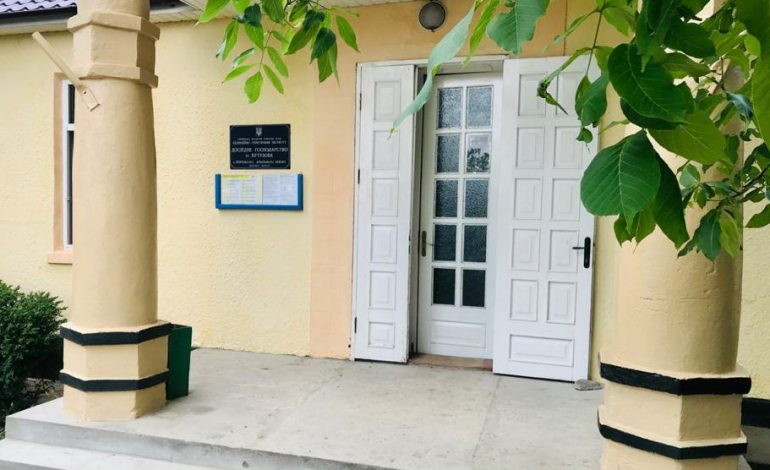 Аудиторы подсчитали убытки опытного хозяйства в Прямобалке Арцизской громады