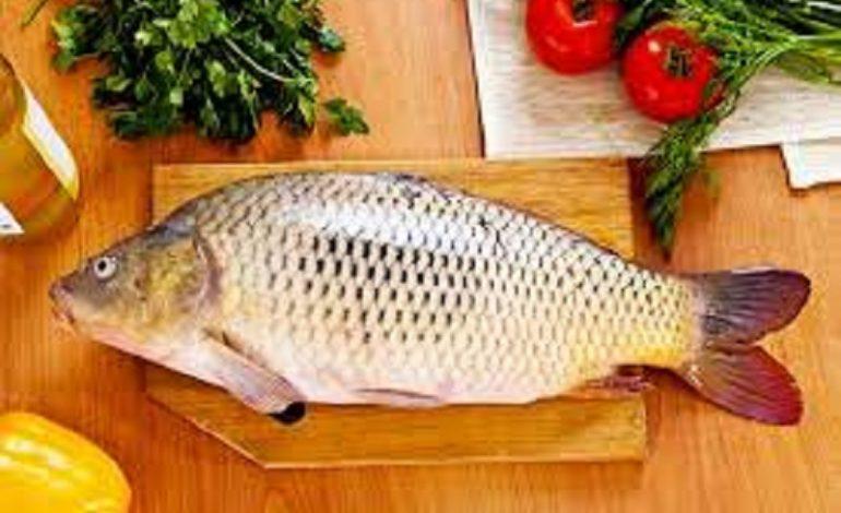 В Одесской области может подорожать речная рыба