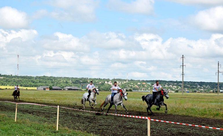 На юге Одесской области организовали конные скачки – победитель выиграл барана