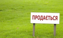 Ренийский горсовет впервые проведёт торги на право аренды сельскохозяйственных земель