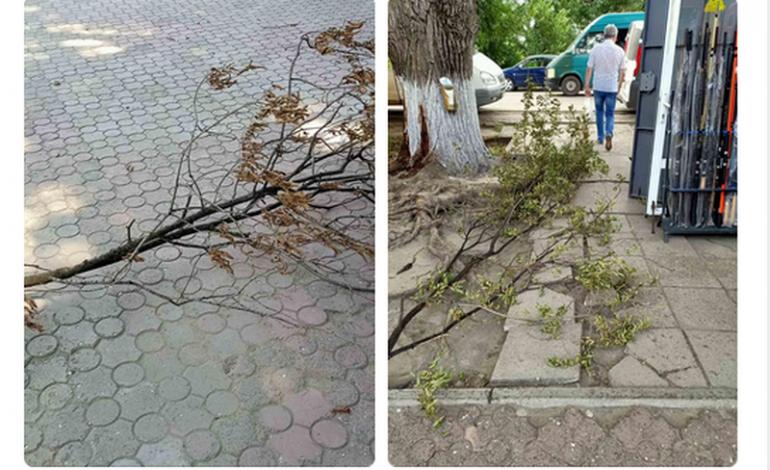 В Арцизе падают ветки, нет уличного освещения – коммунальные службы не реагируют