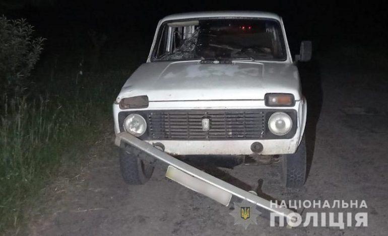 На дороге Арциз-Спасское пьяный водитель задавил пешехода