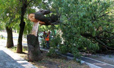 Последствия стихии ликвидируют в Белгороде-Днестровском