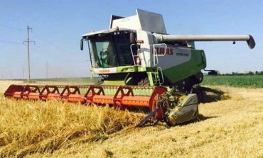 В Болградском районе убрали половину ранних зерновых