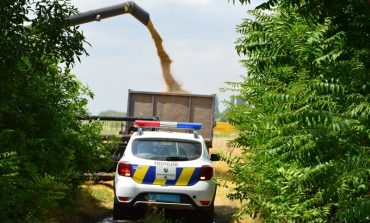 В Килийской громаде СБУ арестовала земли и урожай селян