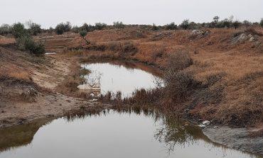 В Арцизе исчезают река и большая зелёная зона (фотофакт)